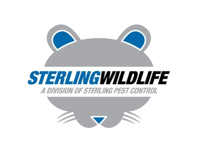 Sterling Wildlife